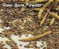 guargumpowder