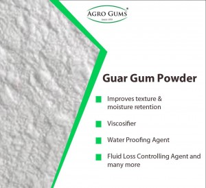 Global Guar Gum Powder Market Growth